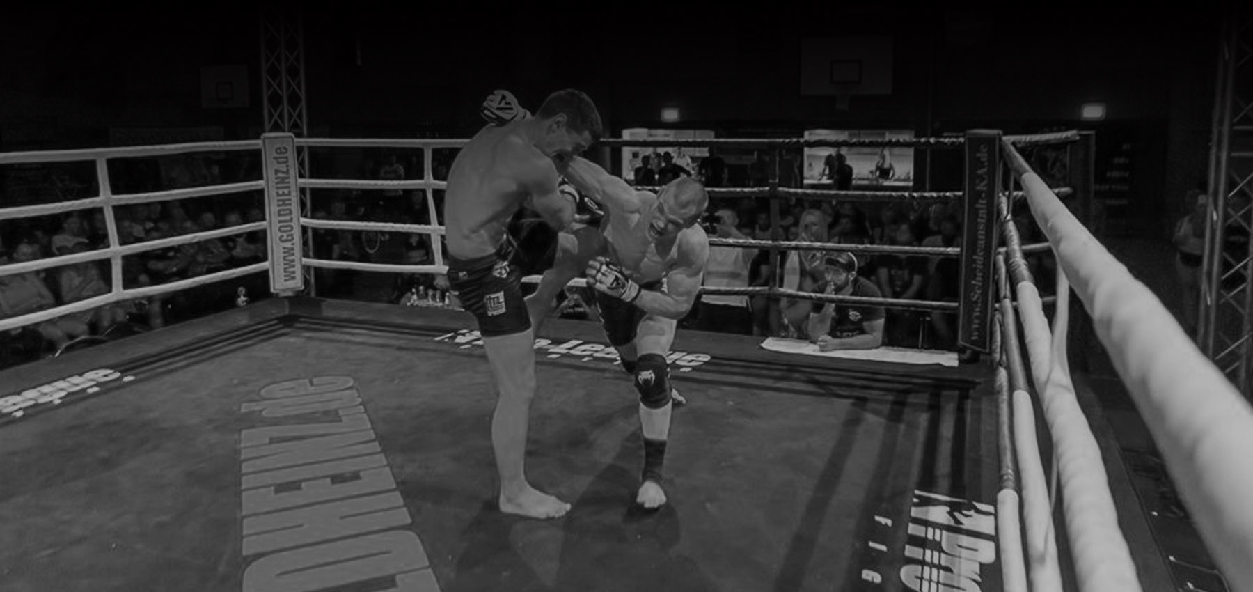 Pro-League Fightnight